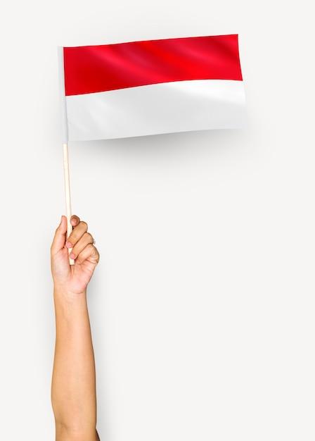 Pessoa acenando a bandeira do principado de mônaco Foto gratuita