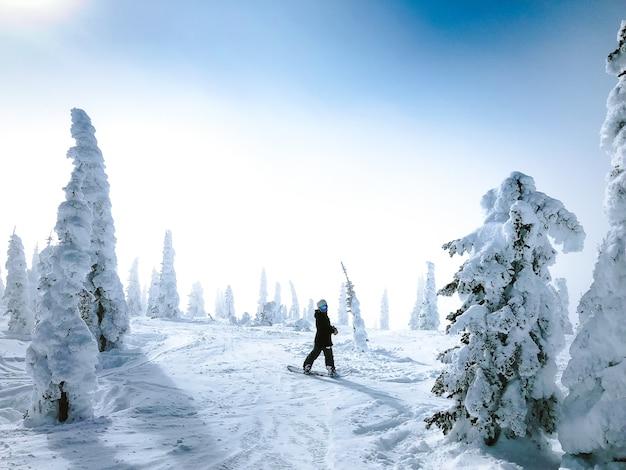 Pessoa em um snowboard, olhando para trás em uma superfície nevada, rodeada por árvores Foto gratuita