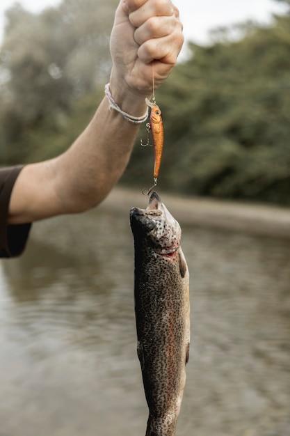 Pessoa, pesca um peixe, com, um, vara Foto gratuita