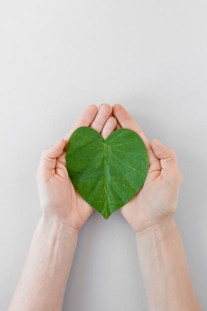 Pessoa, segurando um coração de folha no fundo branco Foto gratuita