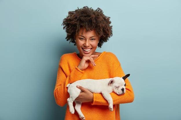 Pessoas, animais, amizade, conceito de amor. mulher afro-americana positiva segura o filhote de cachorro da raça bulldog francês, ri sinceramente, mantém a mão sob o queixo, fica dentro de casa sobre a parede azul Foto gratuita