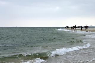 pessoas caminhando na praia, andando Foto gratuita