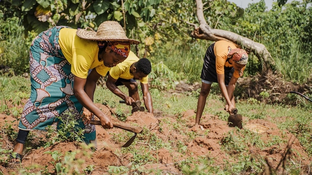 Pessoas do campo trabalhando no campo Foto gratuita