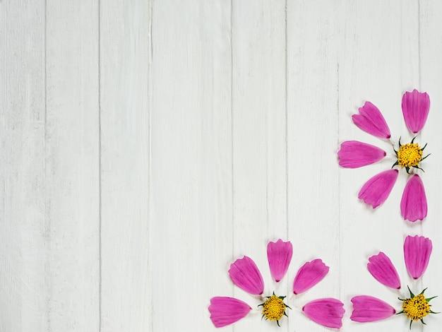 Pétalas cor-de-rosa de uma flor bonita Foto Premium