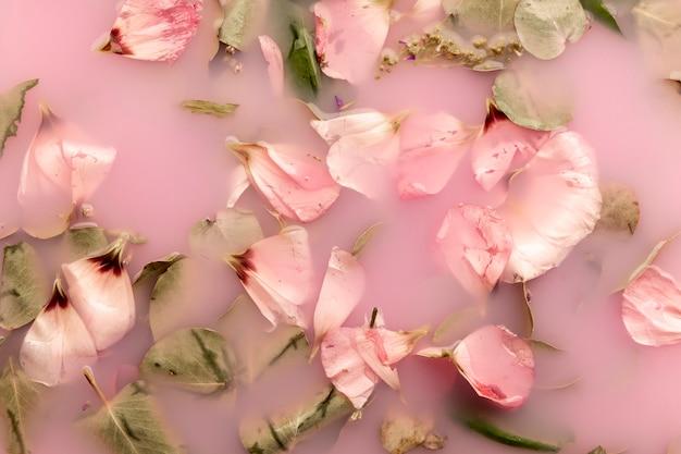 Pétalas cor de rosa na água cor-de-rosa Foto gratuita