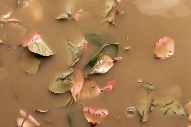 Pétalas e folhas cor-de-rosa na água marrom Foto gratuita