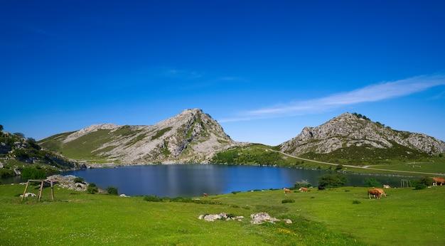 Picos de europa enol lago nas astúrias espanha Foto Premium