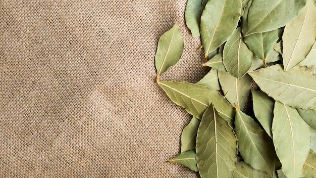 Pilha de folhas secas de louro Foto gratuita