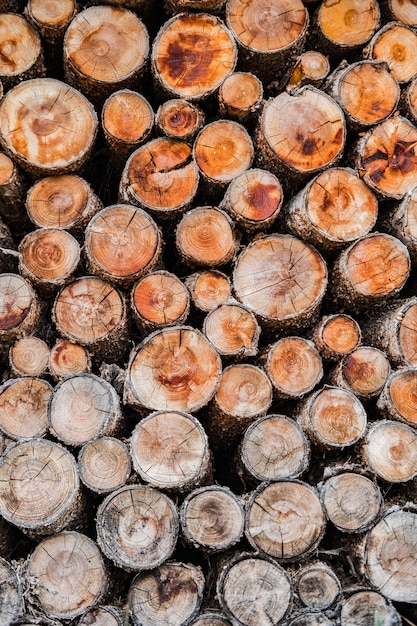 Pilha de madeira cortada, formando o plano de fundo Foto gratuita