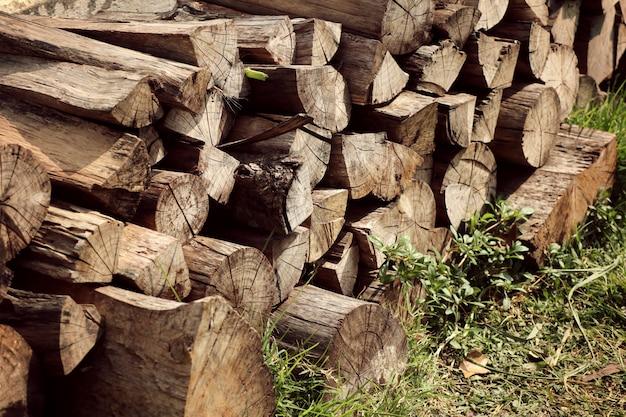 Pilha de madeira na grama Foto Premium