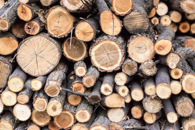 Pilha de madeiras Foto Premium