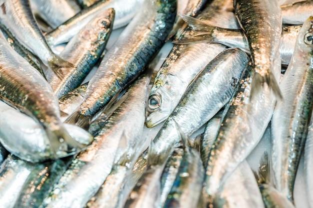 Pilha de peixe fresco no mercado Foto gratuita