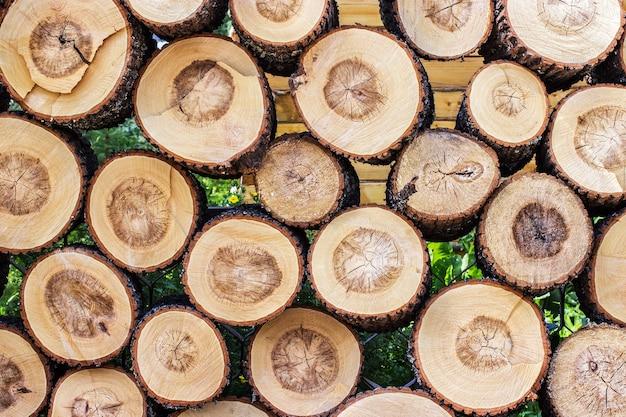 Pilha de textura de log de toco de madeira cortada. pode ser usado como plano de fundo Foto Premium