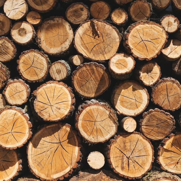 Pilhas de madeira Foto gratuita