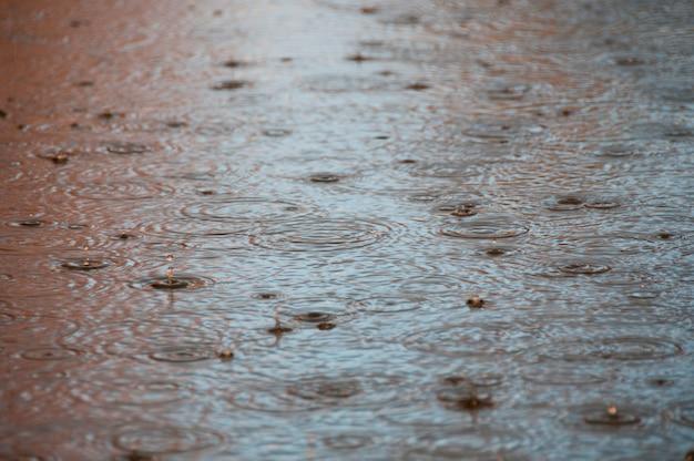 Pingos de chuva em uma piscina de água Foto Premium