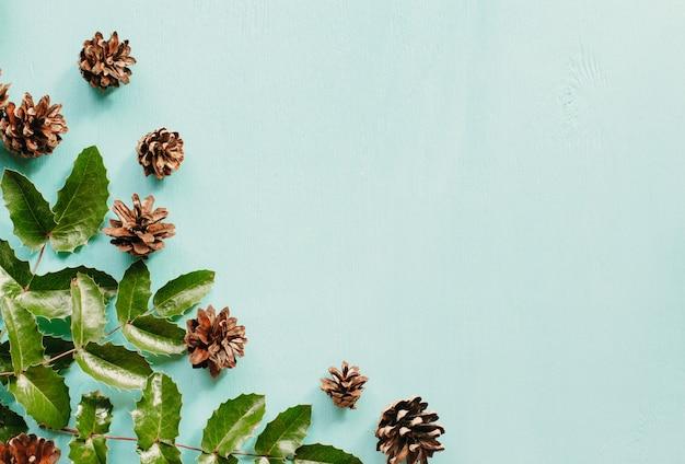 Pinhas e folhas de mahonia em uma madeira azul Foto Premium