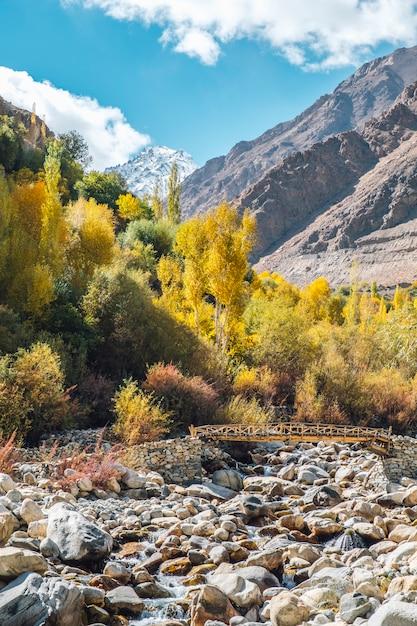 Pinheiro, ponte no outono e montanha em leh ladakh, índia Foto gratuita
