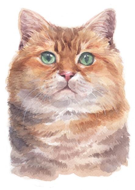 Pintura a cores de água de hosico cat Foto Premium