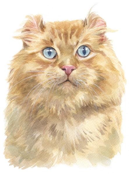 Pintura da cor de água do gato americano da onda Foto Premium