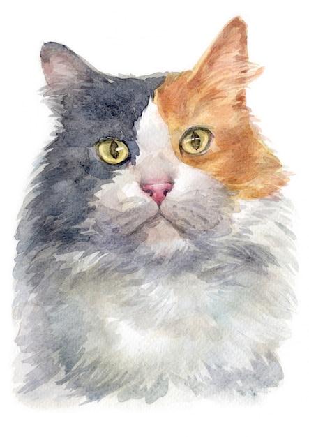 Pintura de cor de água de gato de chita diluído Foto Premium