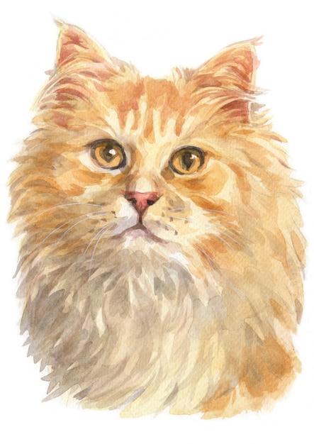 Pintura de cor de água de gengibre gato de cabelos compridos Foto Premium