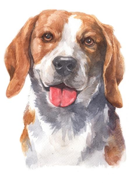 Pintura em aquarela de cachorro beagle Foto Premium