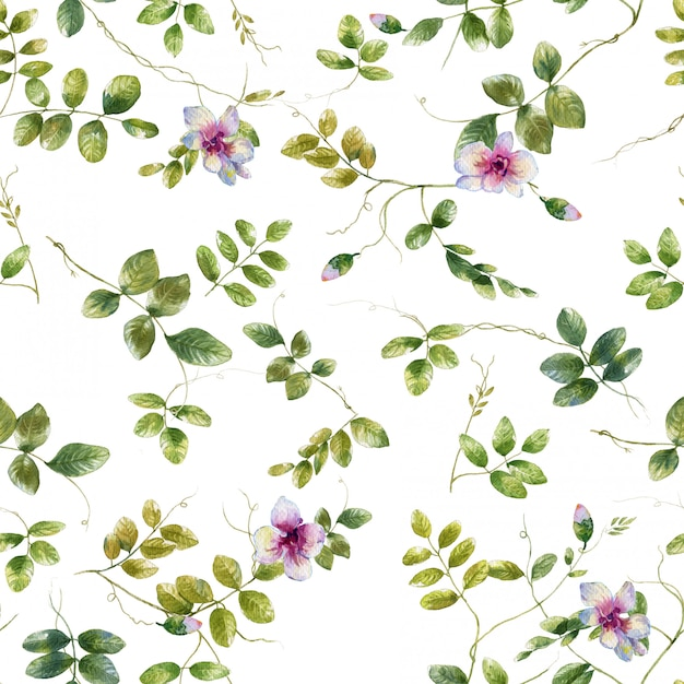 Pintura em aquarela de folha e flores, sem costura padrão em branco Foto Premium