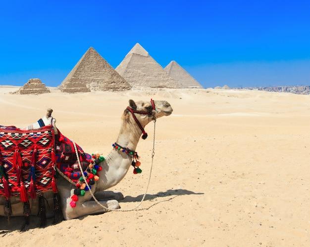 Pirâmides com um lindo céu de gizé, no cairo, egito. Foto Premium
