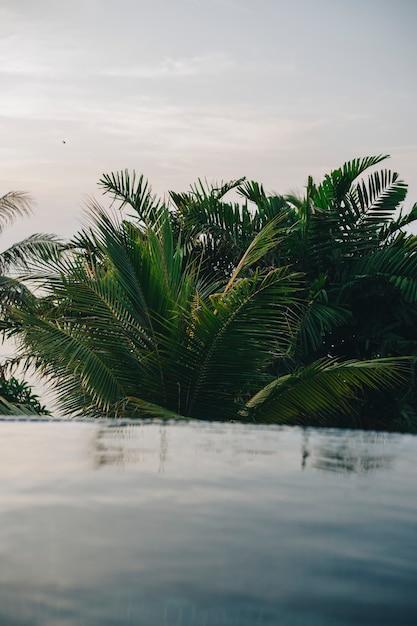 Piscina infinita em um resort Foto gratuita