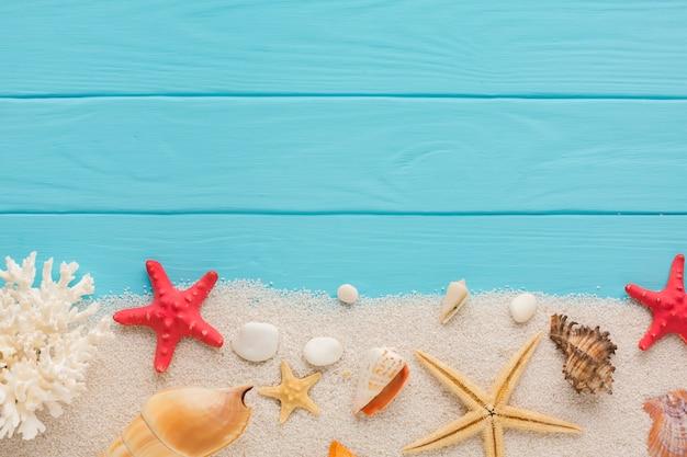 Plana leigos composição areia e conchas Foto gratuita