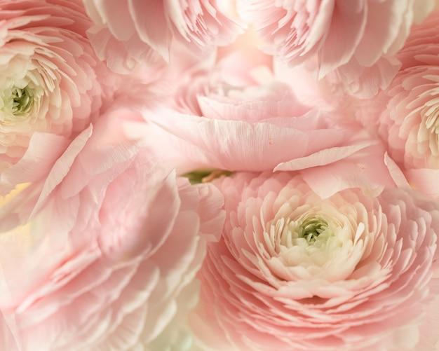 Plano de fundo texturizado de flores rosa pálidas Foto Premium