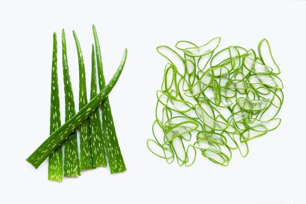 Planta de aloe vera Foto Premium