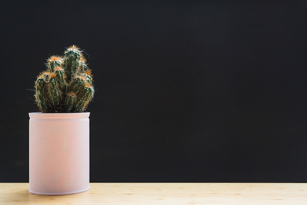 Planta de cacto em recipiente branco na mesa contra o pano de fundo preto Foto gratuita