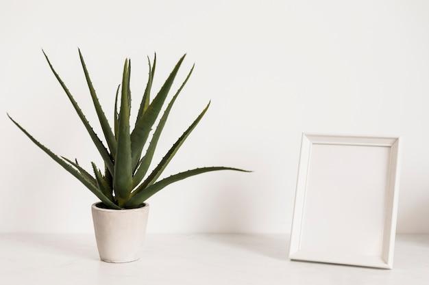Planta de escritório ao lado do quadro Foto gratuita