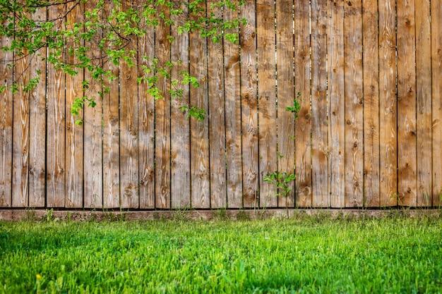 Planta de folha de grama verde primavera fresca sobre cerca de madeira Foto Premium
