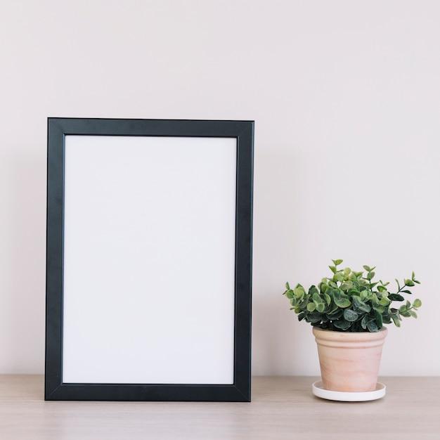 Planta e um quadro Foto gratuita