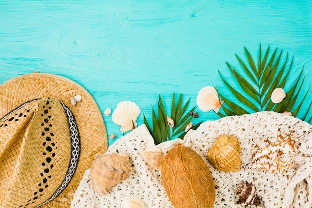 Planta folhagem perto de chapéu com coco e conchas Foto gratuita