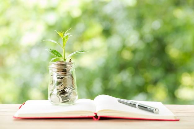 Planta que cresce de moedas no pote de vidro na natureza turva Foto gratuita