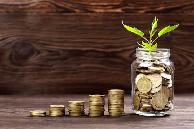 Planta que cresce em frasco de vidro de moedas por dinheiro Foto Premium