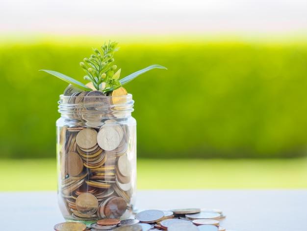 Planta que cresce fora das moedas no frasco de vidro para o conceito da economia do dinheiro Foto Premium