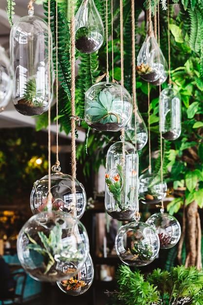 Planta verde decorada em muitas formas de frascos de vidro pendurados com corda no teto com plantas. decoração e atmosfera interior moderna do restaurante. Foto Premium