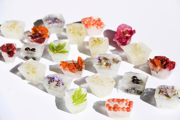 Plantas diferentes em blocos de gelo Foto gratuita