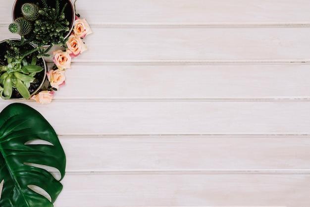 Plantas e folhas em superfície de madeira com espaço Foto gratuita
