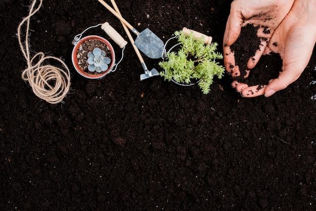 Plantas em baldes com espaço de cópia Foto gratuita