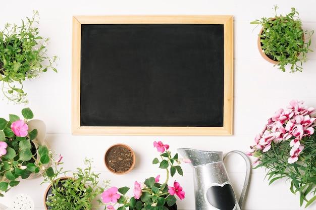 Plantas verdes e quadro-negro em layout Foto gratuita