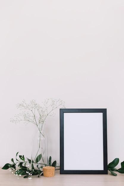 Plantas Foto gratuita