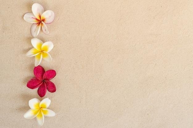 Plumeria flor em fundo de praia de areia Foto Premium
