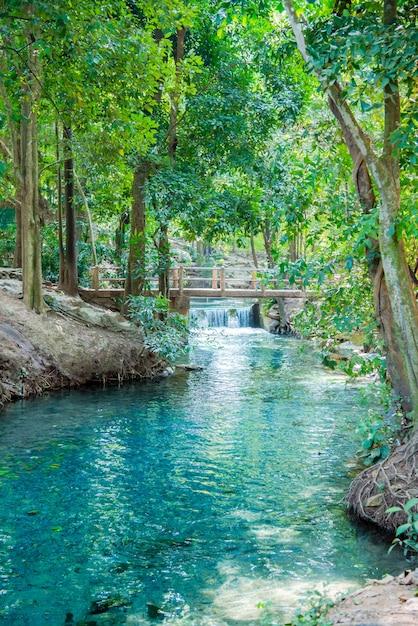Poços naturais é uma atração turística Foto Premium