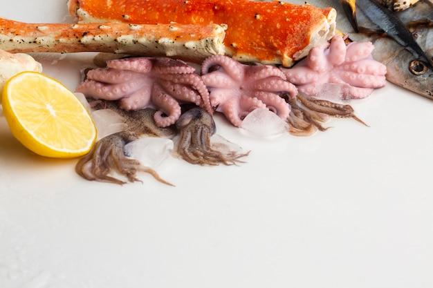 Polvo de alto ângulo e lagosta com limão Foto gratuita