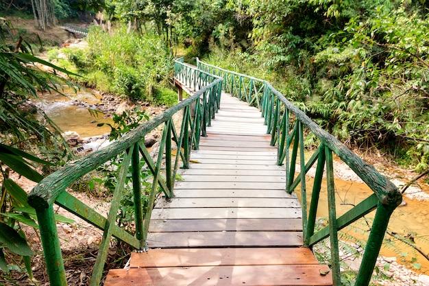 Ponte de madeira na floresta tropical no parque nacional na província de karnchanaburi na tailândia. foco seletivo Foto Premium